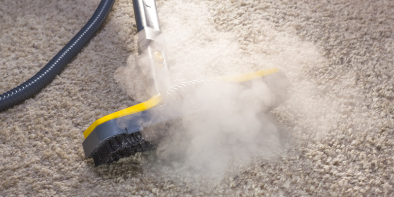 cleaning services may be the right answer for you