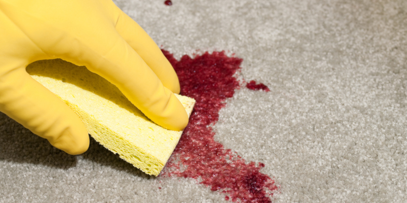 residential carpet cleaning group can assist you