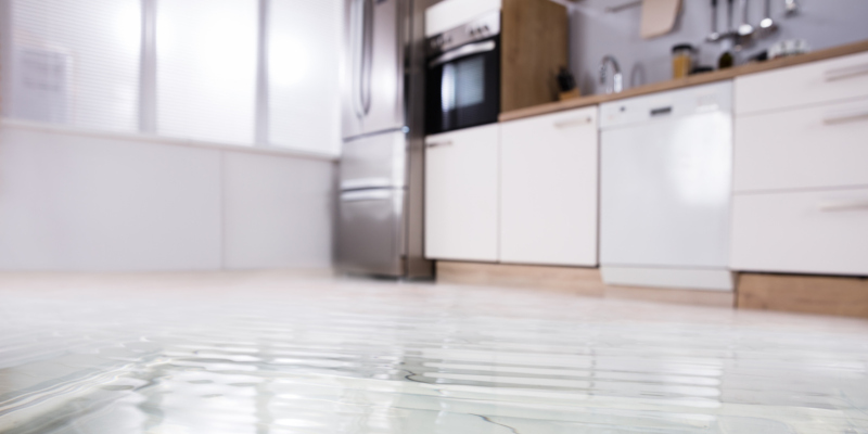 water damage restoration professional will take all the guesswork