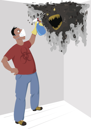 professional mold removal services should be called